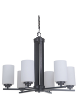 Craftmade 39726-OB - Albany 6 Light Chandelier in Oiled Bronze